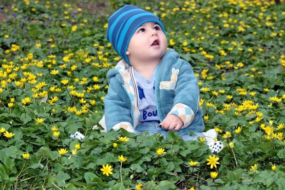 toddler-1244786_1920